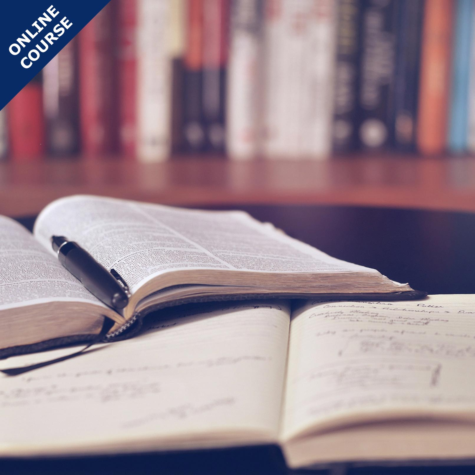 Picture of Online Course in Biblical Counselling for Beginners