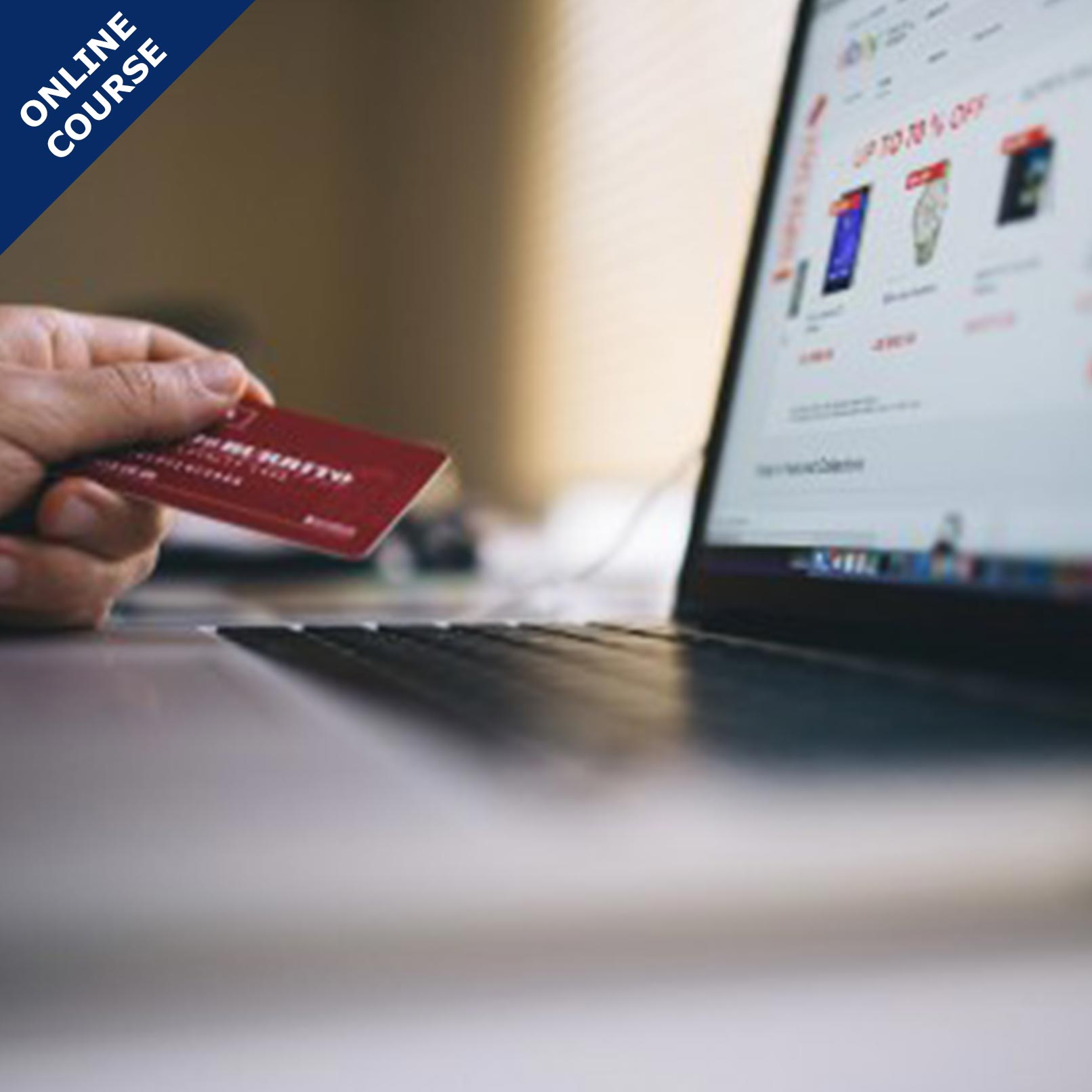 Picture of Online Course in E-Business and E-Commerce