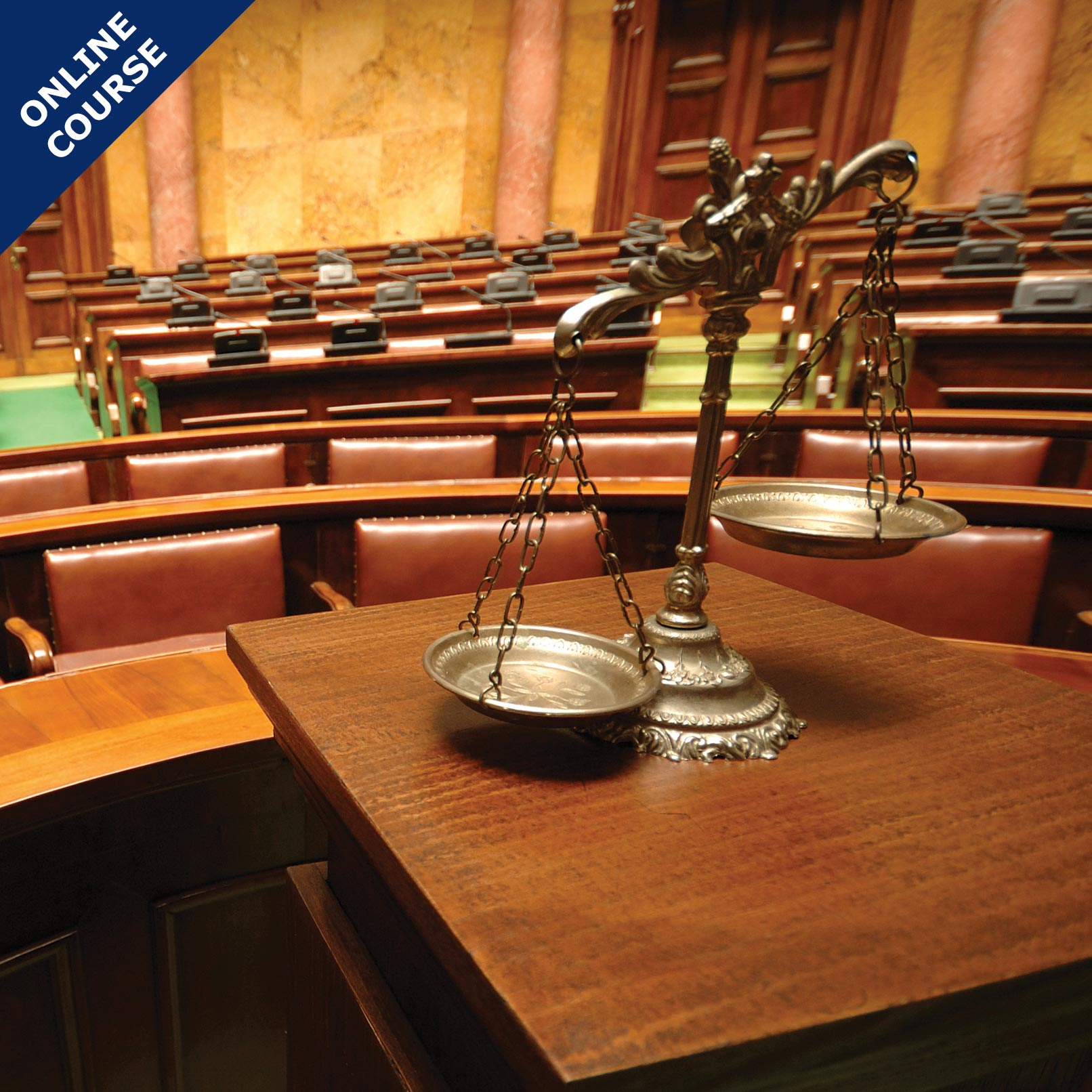 Picture of Online Course in Legal Collections